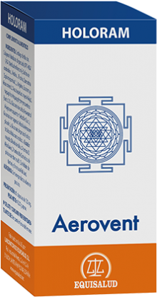 HoloRam Aerovent